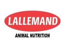 lallemand-animal-nutrition